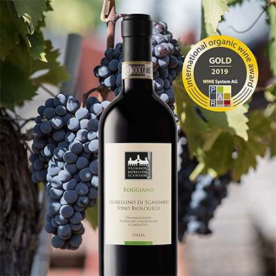 ganador-vino-biologico